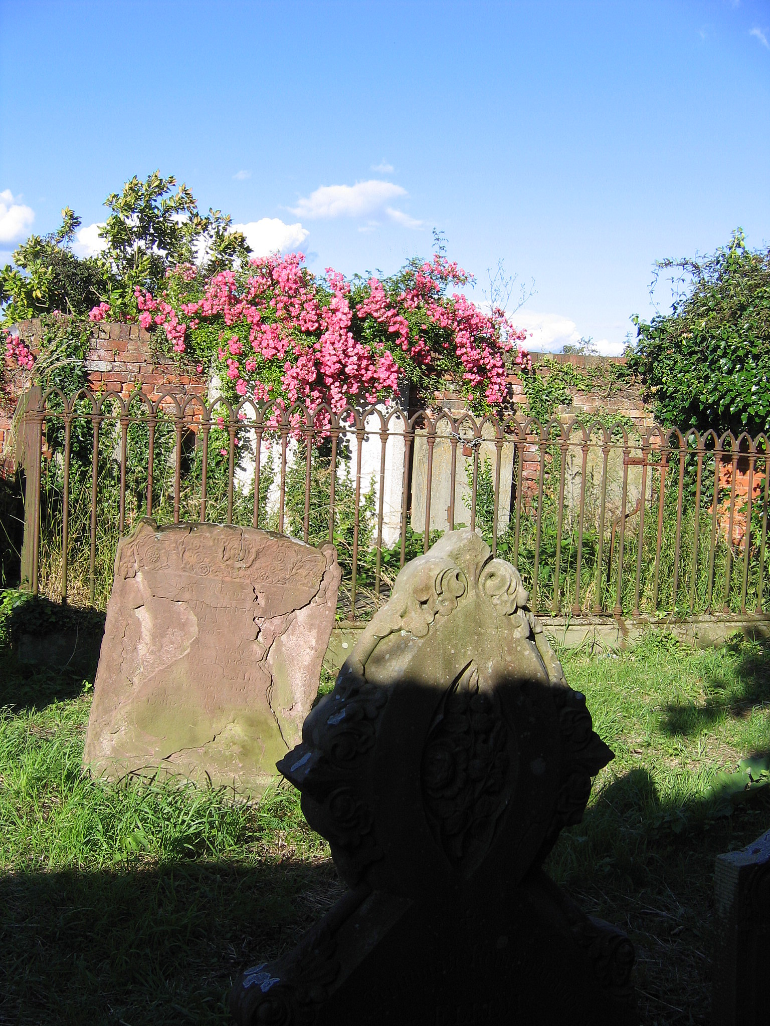 Pink Flowers and Headstones